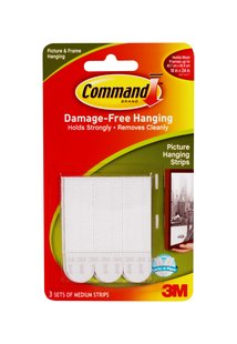 Picture and Frame Hanging Command Strips
